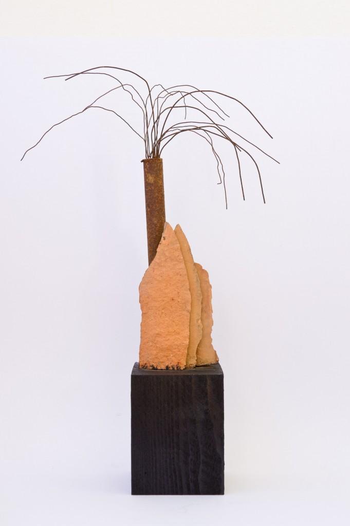 Palmarum, 2012, von stebü Fotografie 50cm x 70cm