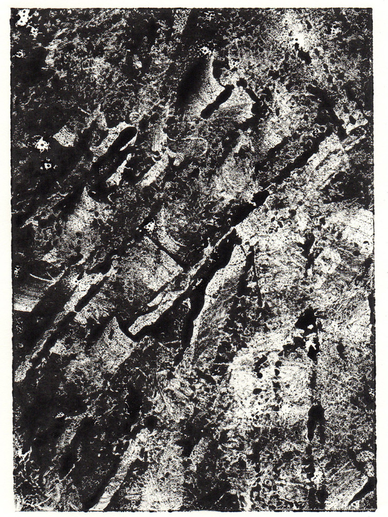 Monotypie, 18,00 cm x 13,00 cm, stebü, 30.03.2018
